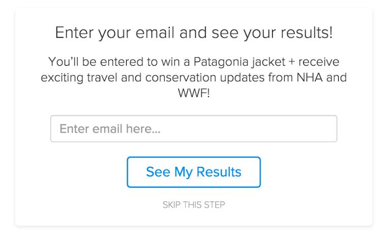 Beispiel Newsletter-Anmeldung mit Quiz